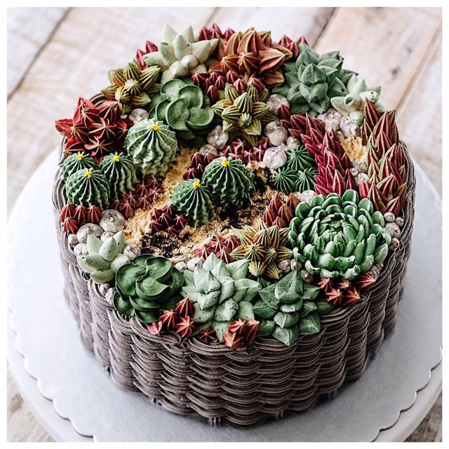 ivenoven succulent cakes the chic flaneuse
