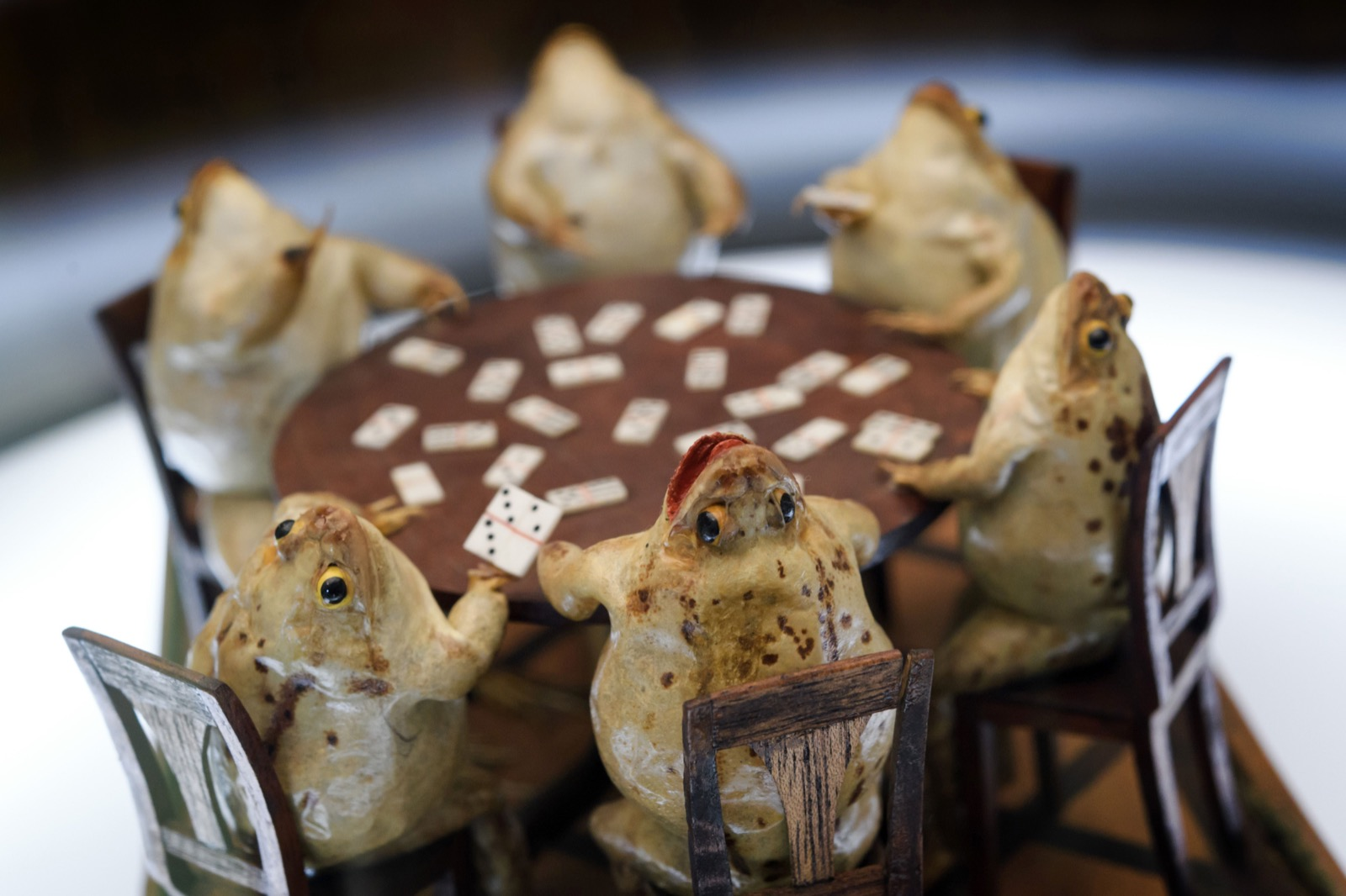 Frog-Playing-Card-at-Frog-Museum-in-Estavayer-le-Lac-western-Switzerland-FABRICE-COFFRINI-AFP-Getty-Images-thechicflaneuse