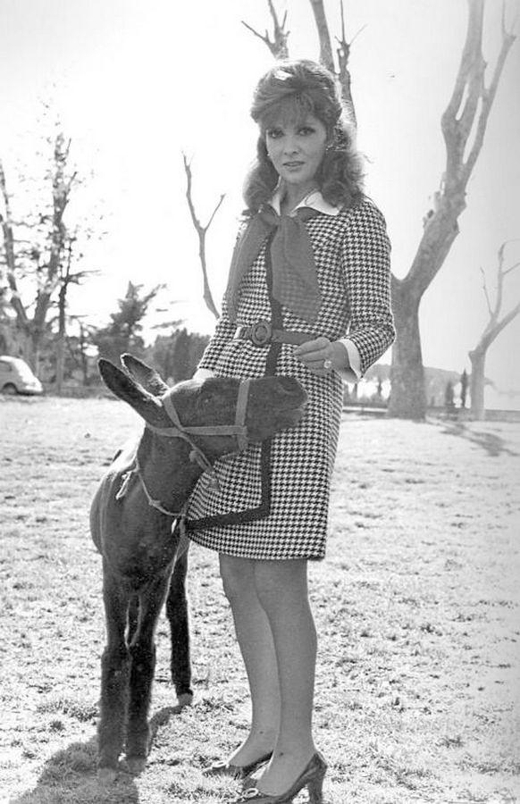 Gina Lollobrigida with a donkey baby