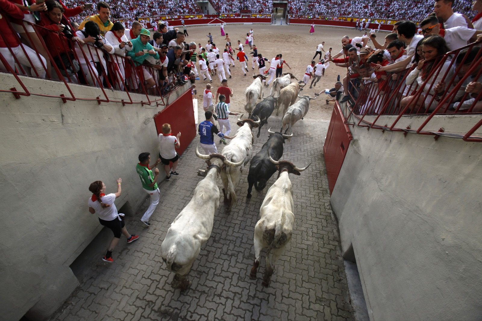 The running of the bulls Pamplona