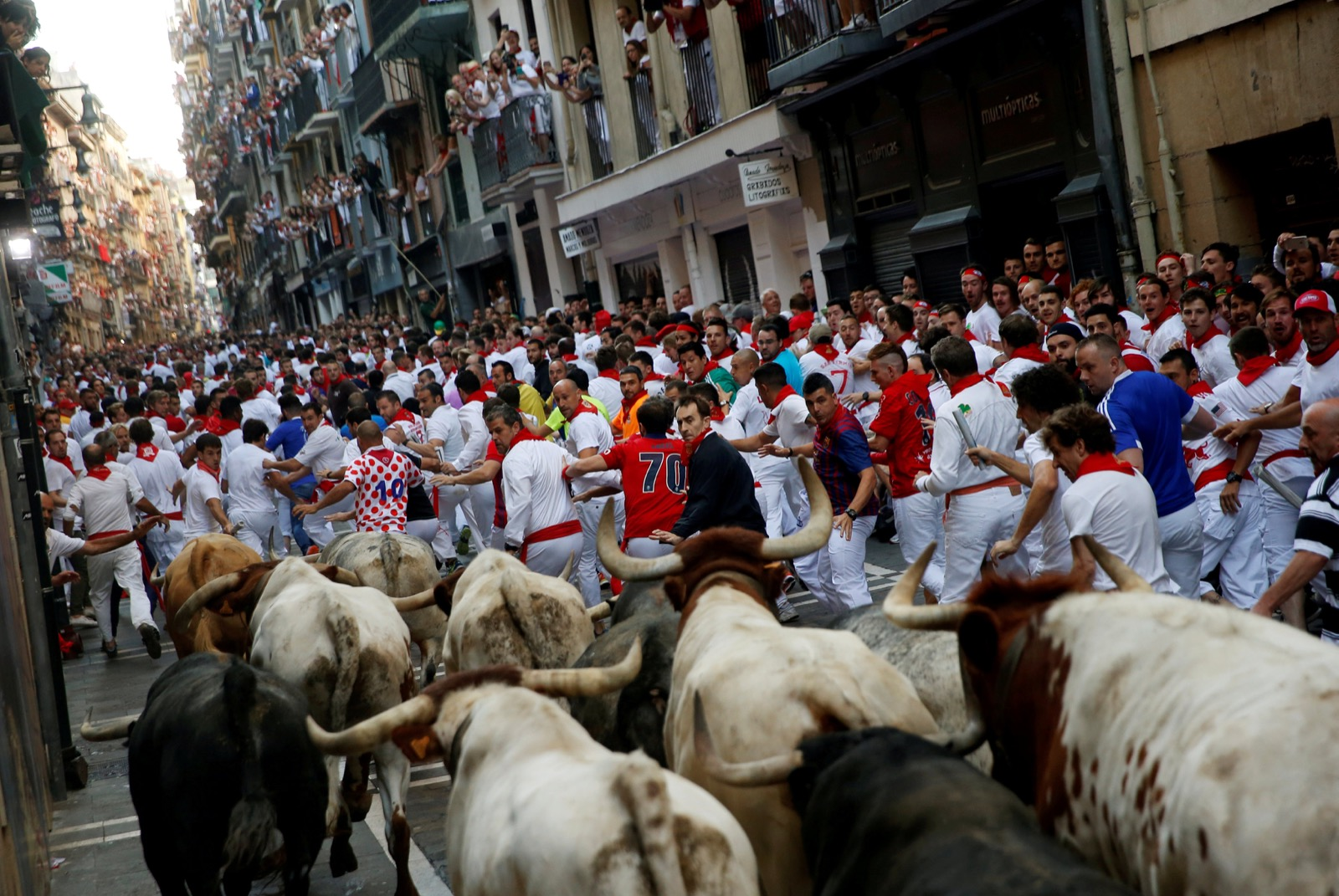 Running of the bulls Pamplona